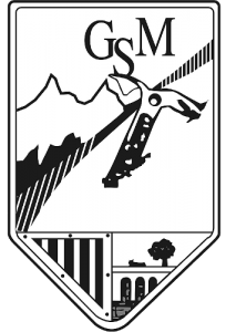 Escudo GSM